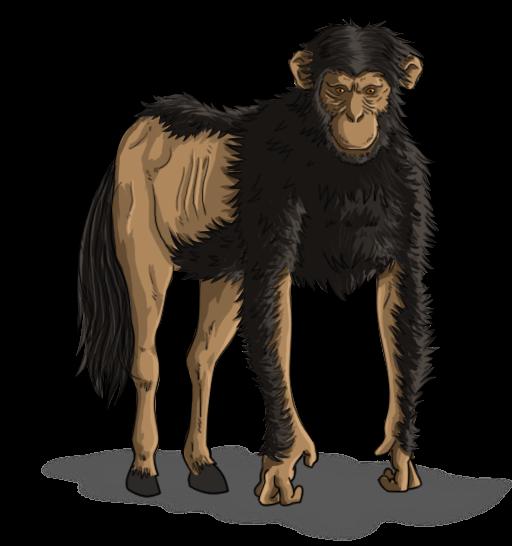 The elusive horse monkey.
